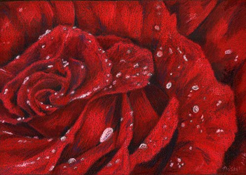 Rose in Red - $125
