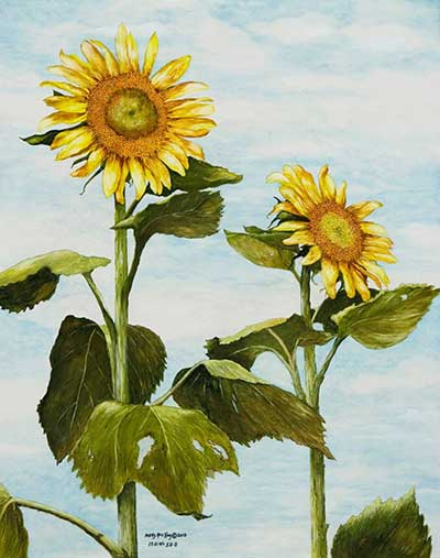 Yana's Sunflowers - $300
